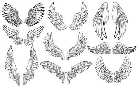 Set di ali d'angelo. Collezione di ali con piume. Illustrazione vettoriale bianco nero. Tatuaggio. Vettoriali
