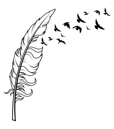 Feather and birds. Black and white vector illustration of stylized feather with silhouettes of flocks of birds. Ilustrace