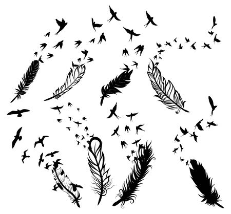 Set of feathers with birds. Collection of stylized feathers with a flock of birds. Black white vector illustration.
