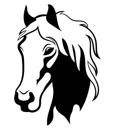 Portrait of a wild mustang. Black white illustration of a horse head. Vector illustration for logo. Tattoo.