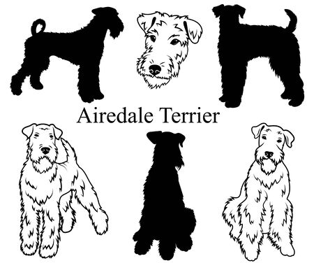Airedale terrier set. Collection of pedigree dogs. Black white illustration of a airedale terrier dog. Vector drawing of a pet. Tattoo.