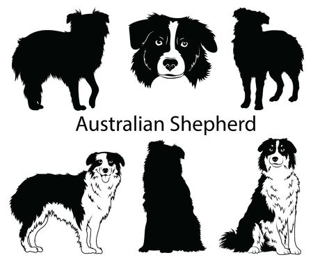 Australian shepherd set. Collection of pedigree dogs. Black white illustration of a australian shepherd dog. Vector drawing of a pet. Tattoo. Stock Illustratie