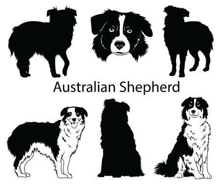 Juego de pastor australiano. Colección de perros de pedigrí. Ilustración en blanco y negro de un perro pastor australiano. Dibujo de una mascota vectorial. Tatuaje.
