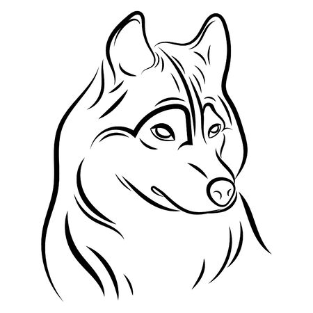 Portrait of a wolf. Black and white illustration of a wild wolf. Linear art. Forest predatory animal. Tattoo.