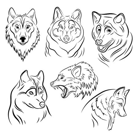 Set of portraits of wolves. Collection of wolf heads. Black and white illustration of a wild animal. Linear art of a predatory animal. Tattoo.