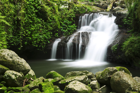 lamington: World heritage area Lamington National Park. Waterfall in the gold coast hinterlands on the NSW border.