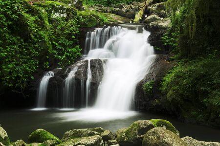 gondwana: Waterfall in the gold coast hinterlands on the NSW border.