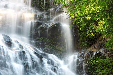 sol radiante: Cascada cerca de Montville Sunshine Coast Tierras del Interior en Queensland.