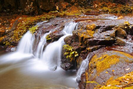 coast: Waterfall with orange and red colours in the Gold Coast hinterlands on the Queensland and New South Wales border.