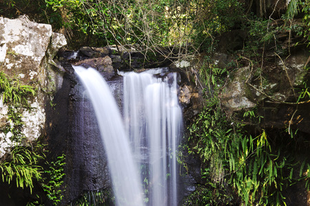 curtis: Curtis Falls located in Mount Tamborine during the day. Long exposure.