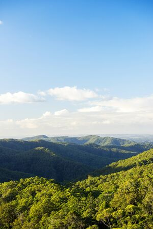 goldcoast: Mountain view of the Gold Coast Hinterlands in the late afternoon.
