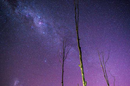 rural area: Stars in the rural area of Brisbane, Queensland, Australia. Stock Photo