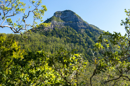 scenic: Spicers Gap Lookout overlooking the mountains in the Scenic Rim, Queensland during the day