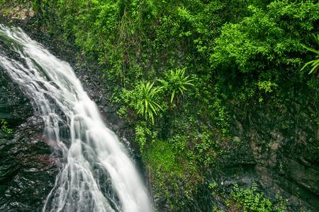 queensland: Natural Bridge Waterfall at Springbrook in Queensland. Stock Photo