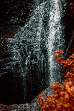 Natural Bridge Waterfall at Springbrook in Queensland with red foliage.