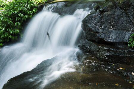 lamington: Waterfall in Lamington National Park in Queensland, Australia.