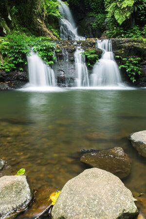 cascade range: Waterfall in Lamington National Park in Queensland, Australia.