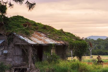 queensland: Old abandoned farming shed near Mount Walker in Queensland. Stock Photo