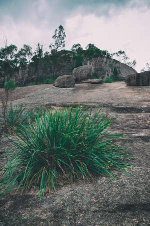 queensland: Girraween National Park during the day in Queensland, Australia Stock Photo