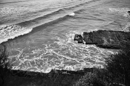 geological formation: View of Tessellated Pavement in Pirates Bay, Tasmania. Black and White.