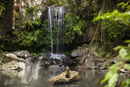 curtis: Curtis Falls waterfall in Mount Tambourine, the waterfall is located in the gold coast hinterlands, Queensland.