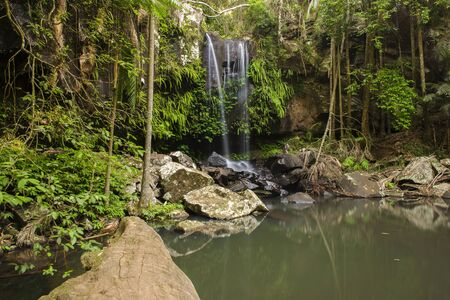 Curtis Falls waterfall in Mount Tambourine, the waterfall is located in the gold coast hinterlands, Queensland.