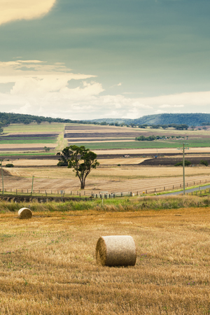 Outback agricultural and farming field in Queensland in the afternoon.