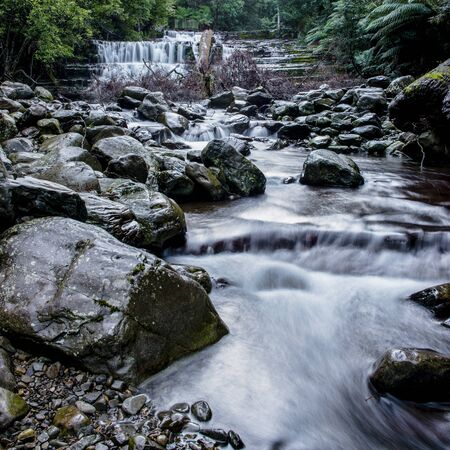 Beautiful Liffey Falls in the Midlands Region, Tasmania after heavy rain fall.