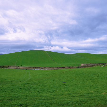 Farming field in Tasmania, Australia during the daytime.