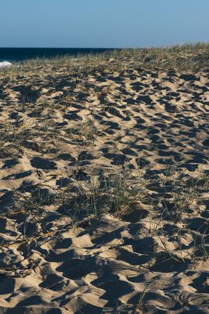Sunshine beach at Noosa, Sunshine Coast, Queensland, Australia.