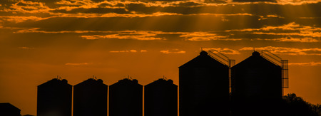 Agricultural silos, storage and drying for sunflower, soy, corn, wheat and grains. Stock Photo