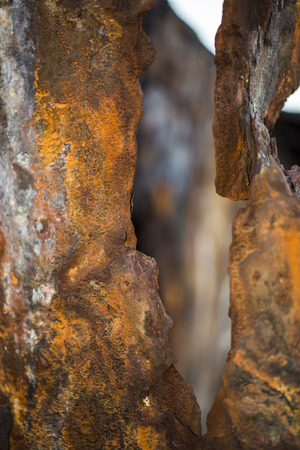 Shipwreck of HMQS Gayundah at Woody Point, Queensland, Australia. 写真素材