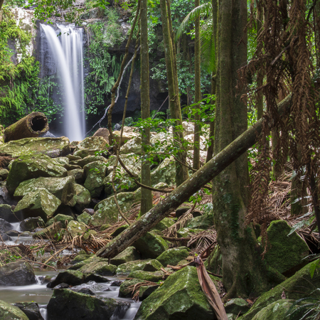 Curtis Falls Located In Mount Tamborine During The Day Stock Photo