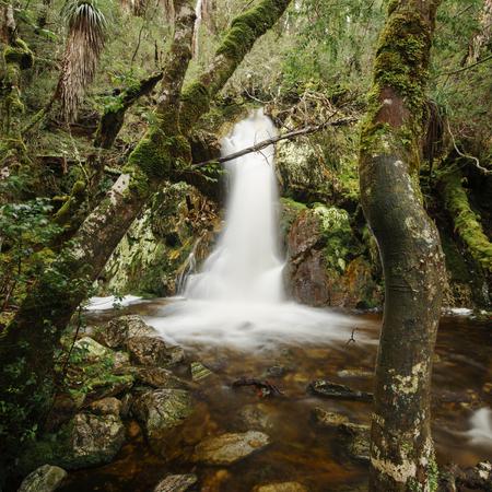 Beautiful Crater Falls in Cradle Mountain, Tasmania.