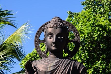 imbedded: Buddha Statue