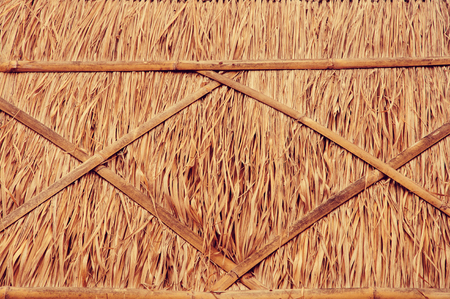 thatch: thatch roof in vintage style