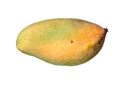 rot: rot mango isolated