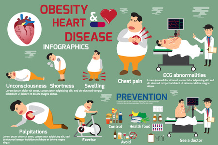 Obesity and heart disease infographic, detail of symptoms obesity and heart disease with prevention. use for advertising brochure and template etc. vector Illustration.