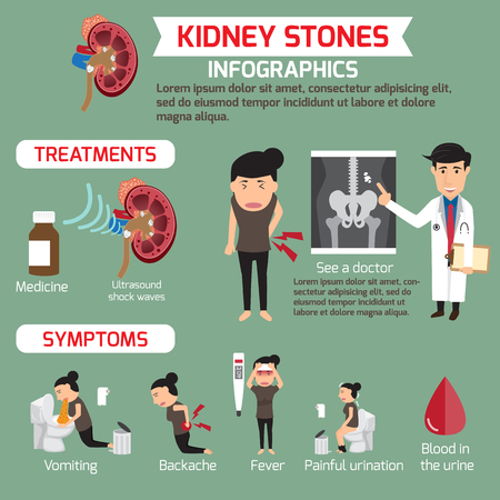 Treatment and symptoms of kidney infographics. vector illustration.