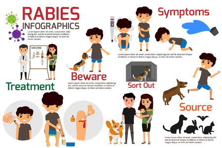 Rabies Infographics. Illustration of rabies describing symptoms and medications or vaccine. vector illustrations. 스톡 콘텐츠 - 103023292