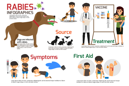 Rabies Infographics. Illustration of rabies describing symptoms and medications or vaccine. vector illustrations. Illustration