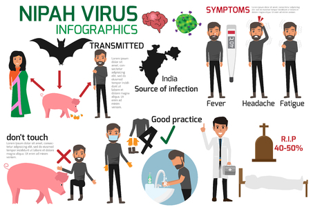Nipah virus (niv) Infographics is a newly emerging zoonosis that causes severe disease in both animals and humans. Healthy cartoon concept vector illustration. Symptoms and prevention of Nipah Virus.
