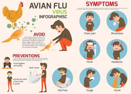 Avian flu infographic elements. Bird flu disease. Discussion on bird flu virus and symptoms. Health and medical concept vector illustration.