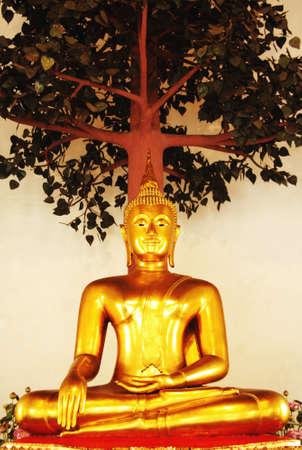 buddha Editorial