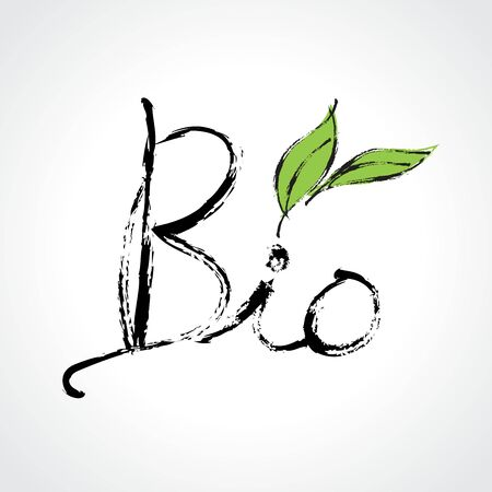 Bio icon with Green leaf hand drawn vector illustration, Calligraphic and typographic, Paintbrush stroke Иллюстрация