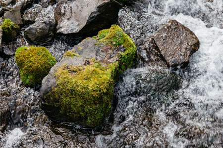 Close up stone with moss and natural water at Fukidashi Park in Hokkaido, Japan. Stock Photo