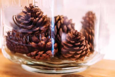 Pine cones inside glass jar. Stock Photo