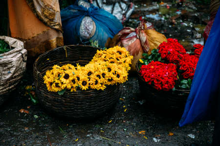 Fresh Sun Flowers and Roses in the basket for sell in the morning at Mullick Ghat flower market in Kolkata, India.