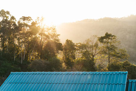 Tree branches on blue house roof and mountain with sunlight and fog in the evening in the Akha village of Maejantai on the hill in Chiang Mai, Thailand. Standard-Bild - 121594416