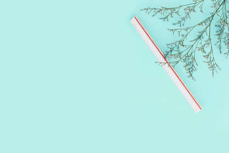 Mint green color background with flower branches and scale ruler on the right side. Architect and designer background with copy space. Standard-Bild - 122497368